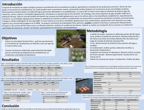 [FCIEN]Factores ambientales que favorecen el crecimiento de cianobacterias en la cuenca del Río Santa Lucía, Uruguay