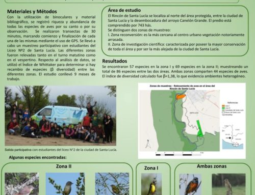 Relevamiento de aves en el área del Rincón de Santa Lucía